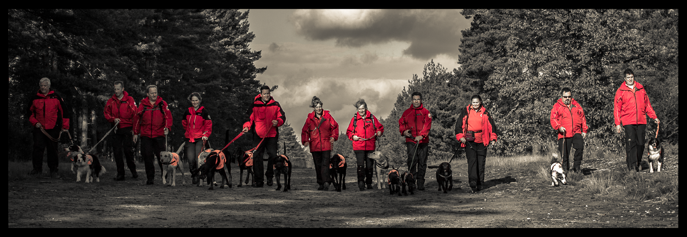 Berkshire Search & Rescue Dogs - BSARD